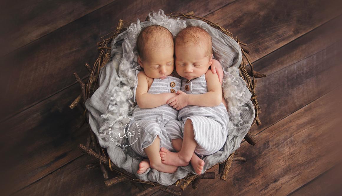 Twins Elliot and Flynn | Sydney Newborn Photographer