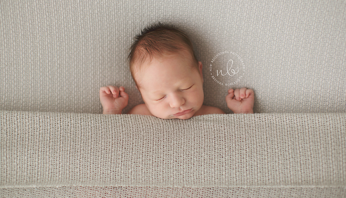 Reid 6 days old | Sydney Newborn Photography
