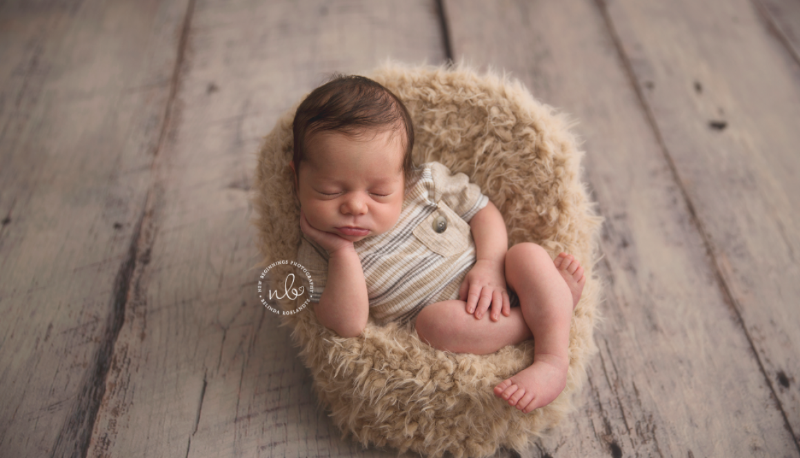Damon 15 days | Sydney Newborn Photography
