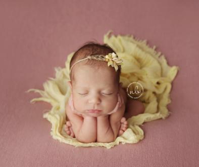 Zara 13 days | Sydney Newborn Photographer